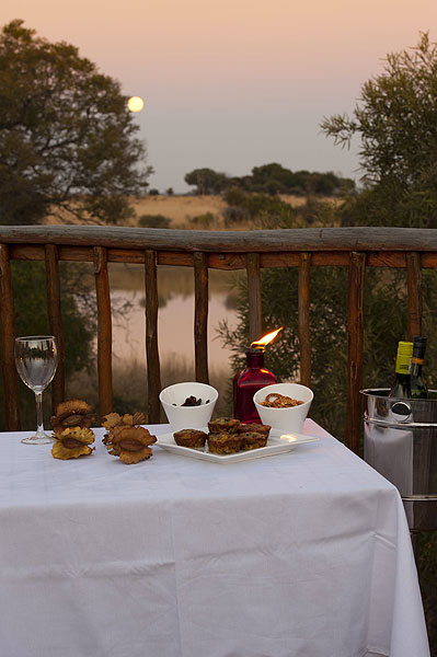 Enjoy an evening in our luxury tented-rooms, tucked away separately in the secluded bush at Thandeka Game Lodge